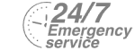 24/7 Emergency Service Pest Control in Forest Hill, SE23. Call Now! 020 8166 9746